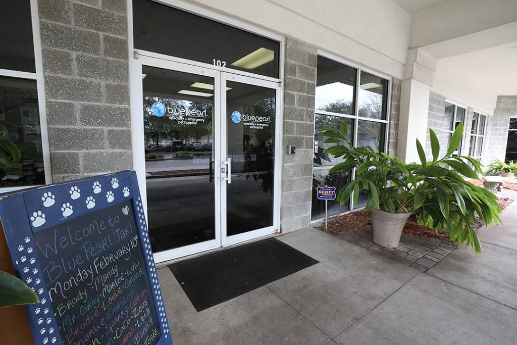BluePearl Pet Hospital - veterinary care  | Photo 9 of 9 | Address: 3444 Southside Blvd Suite 103, Jacksonville, FL 32216, USA | Phone: (904) 646-1287