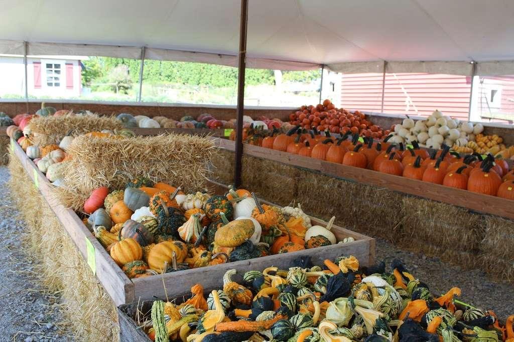 Green Ridge Farm - bakery  | Photo 8 of 10 | Address: 220 Octorara Rd, Parkesburg, PA 19365, USA | Phone: (610) 857-2351