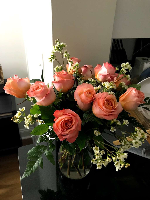 Noahs Ark Florist - florist  | Photo 6 of 10 | Address: 200 Hudson Street Harborside Financial Center, Jersey City, NJ 07311, USA | Phone: (201) 521-1031