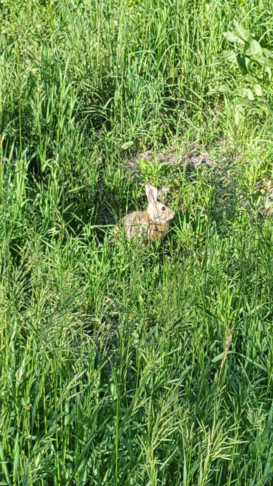 Three Pond Park - park    Photo 8 of 10   Address: Cherry Hills Village, CO 80113, USA   Phone: (303) 783-2733