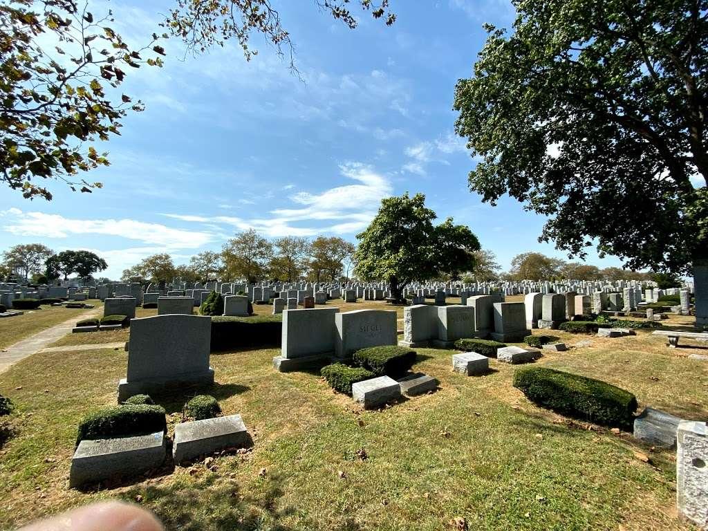 Beth David Cemetery - cemetery    Photo 4 of 10   Address: 300 Elmont Rd, Elmont, NY 11003, USA   Phone: (516) 328-1300