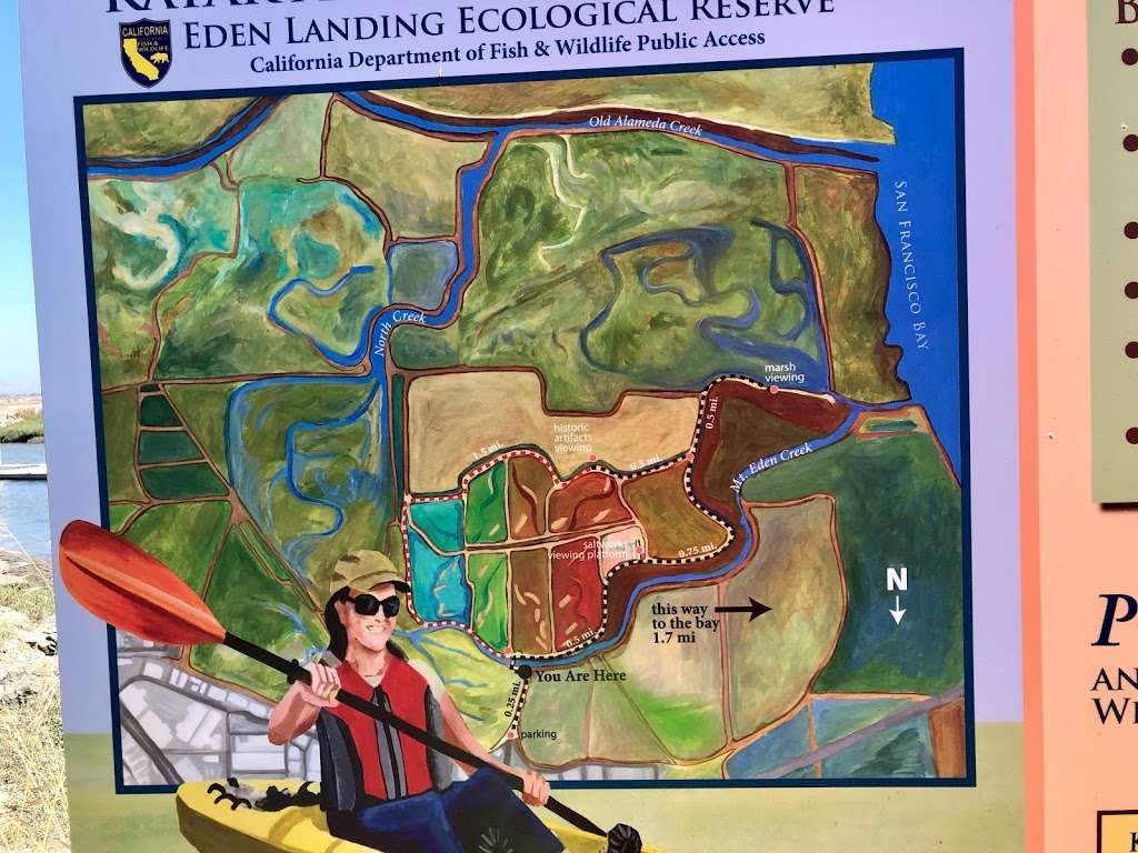 Eden Landing Kayak and Canoe Launch - park  | Photo 5 of 7 | Address: 461 006100900, Hayward, CA 94545, USA