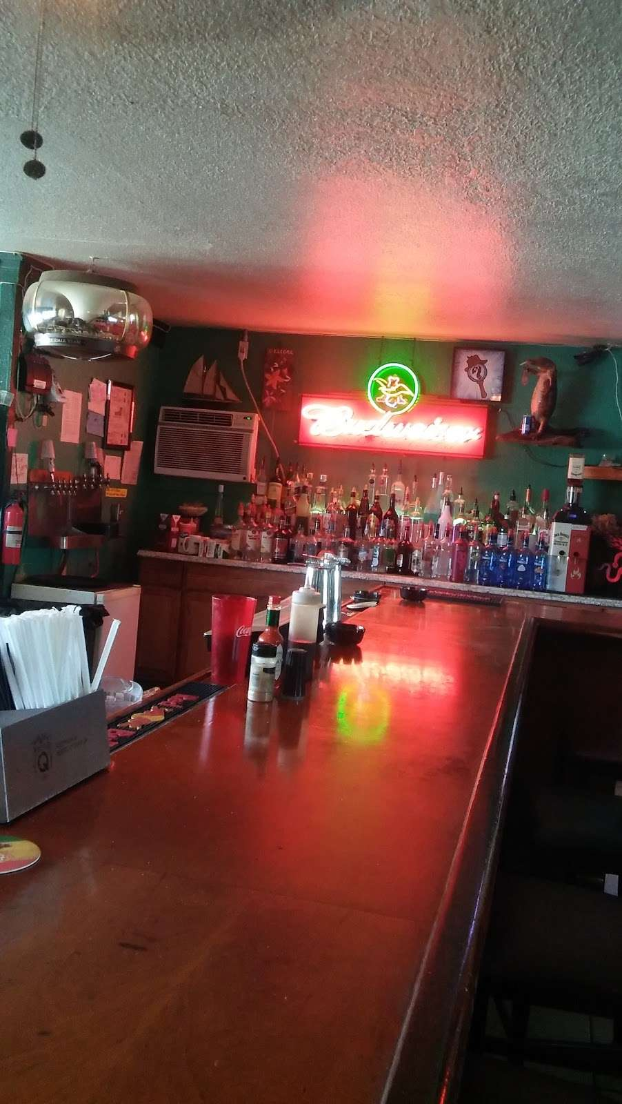 Cozy Cove Inn - lodging  | Photo 2 of 7 | Address: 5790 Alligator Lake Shore W, St Cloud, FL 34771, USA | Phone: (201) 283-7005