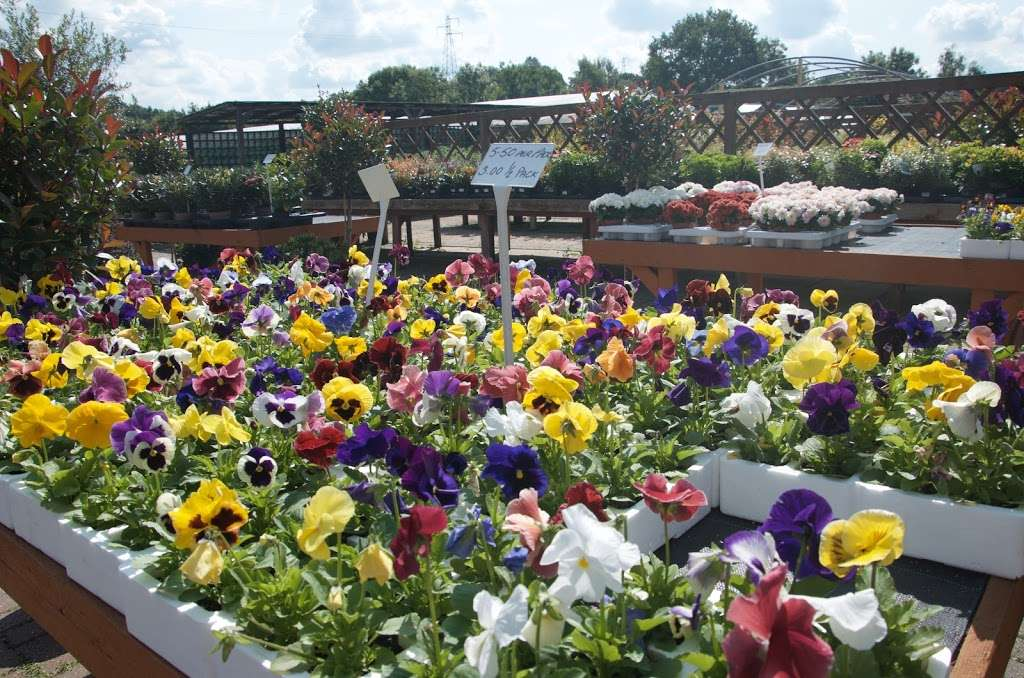 Greenacres - store  | Photo 3 of 10 | Address: Borough Green Road, Ightham, Sevenoaks TN15 9HS, UK | Phone: 01732 884726