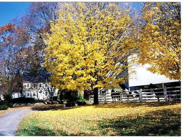 Shallowbrook Farm LLC - real estate agency    Photo 6 of 10   Address: 93 Smithville Rd, New Providence, PA 17560, USA   Phone: (717) 786-9300
