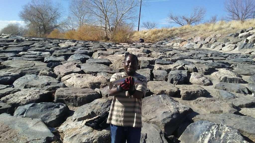 Carpio Sanguinette Park - park  | Photo 6 of 10 | Address: 1400 53rd Ave, Denver, CO 80216, USA | Phone: (720) 913-1311