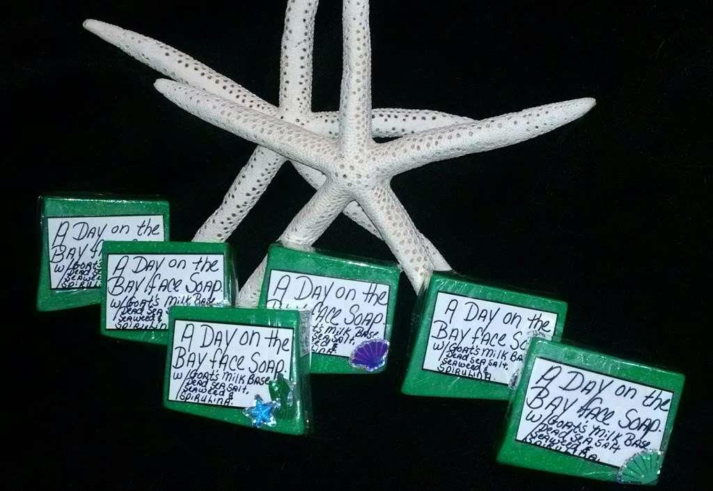 Blue Iris Day Spa & Salon - spa  | Photo 6 of 7 | Address: 879 W Pulaski Hwy, Elkton, MD 21921, USA | Phone: (410) 287-1331