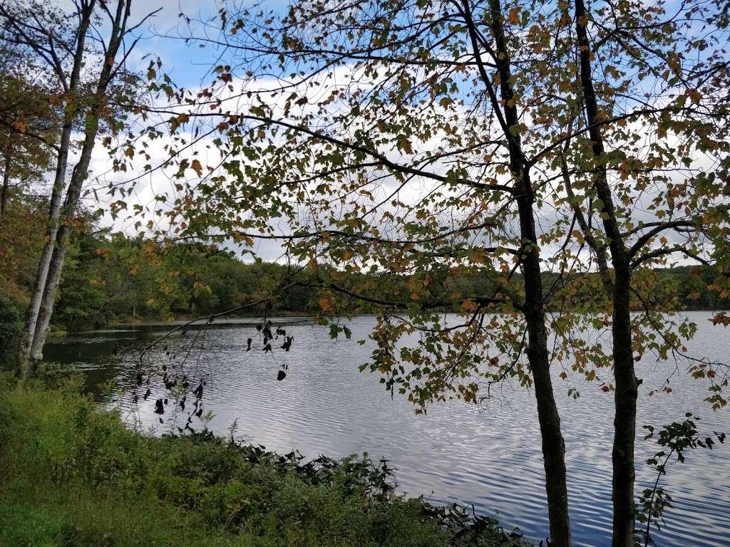Moon Lake State Forest Recreation Area - park  | Photo 10 of 10 | Address: Hunlock Creek, PA 18621, USA