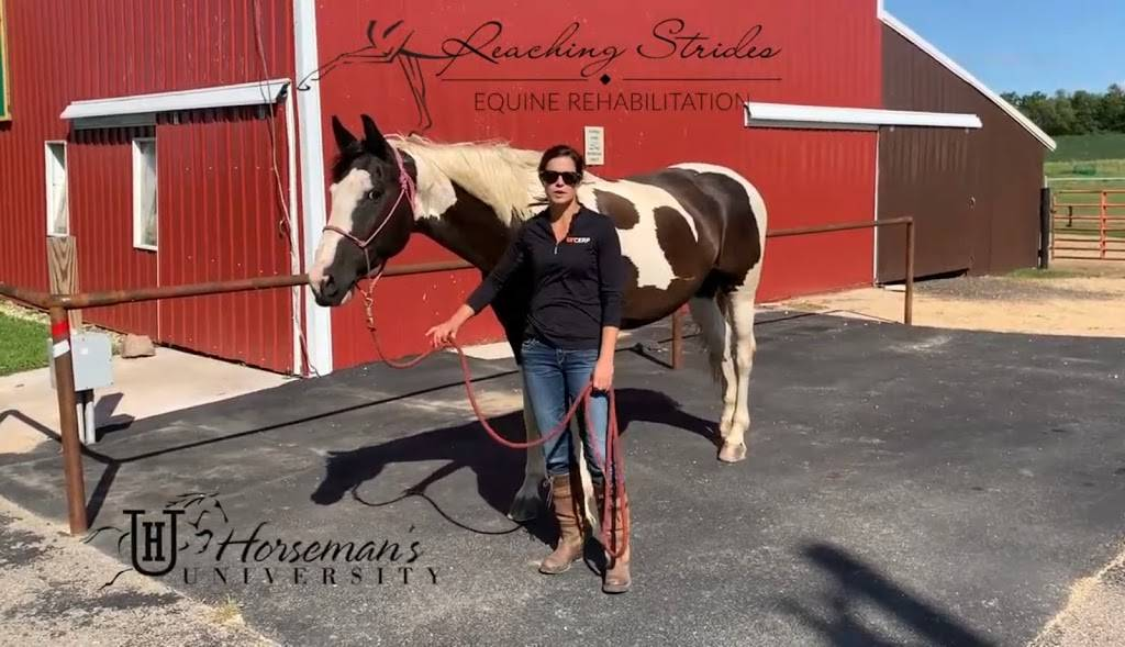 Reaching Strides Equine Rehabilitation - physiotherapist  | Photo 2 of 3 | Address: N8294 County Hwy E, Brooklyn, WI 53521, USA | Phone: (608) 513-8884
