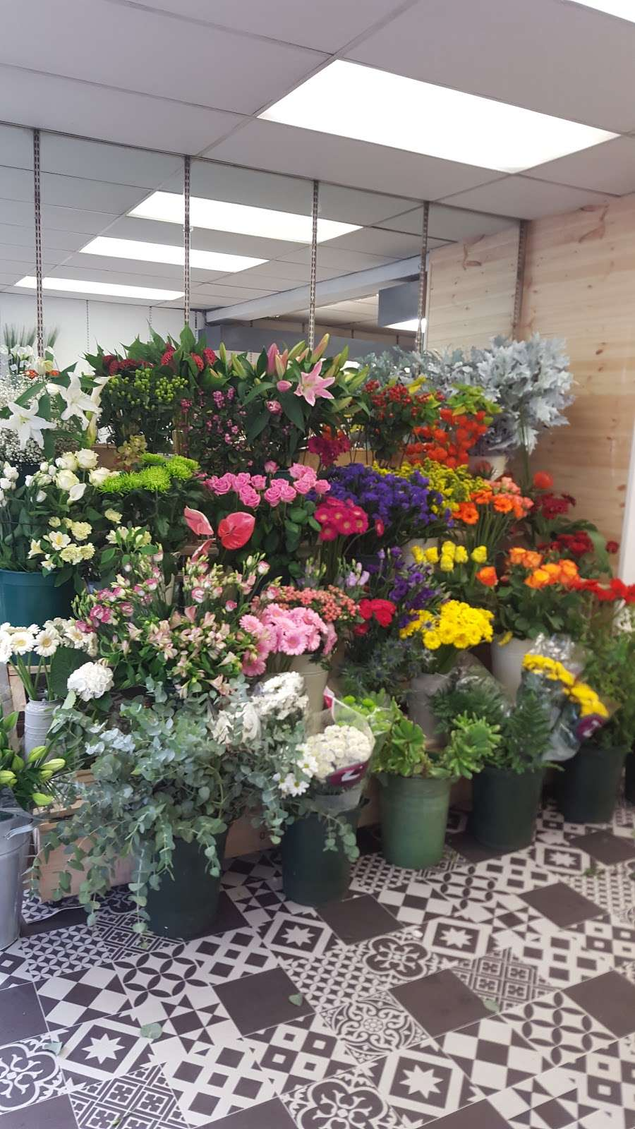 Coggers in Bloom - florist  | Photo 10 of 10 | Address: 849 Forest Rd, Walthamstow, London E17 4AT, UK | Phone: 020 8527 1051