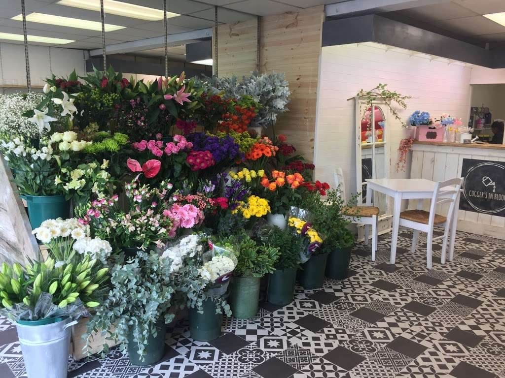 Coggers in Bloom - florist  | Photo 4 of 10 | Address: 849 Forest Rd, Walthamstow, London E17 4AT, UK | Phone: 020 8527 1051