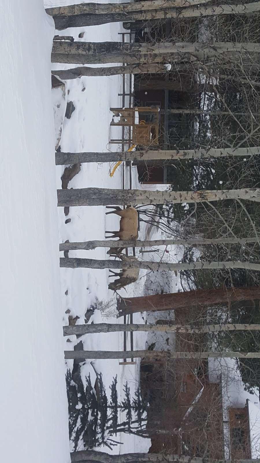 Estes Park Retreat - real estate agency  | Photo 9 of 9 | Address: 1180 Fall River Rd, Estes Park, CO 80517, USA