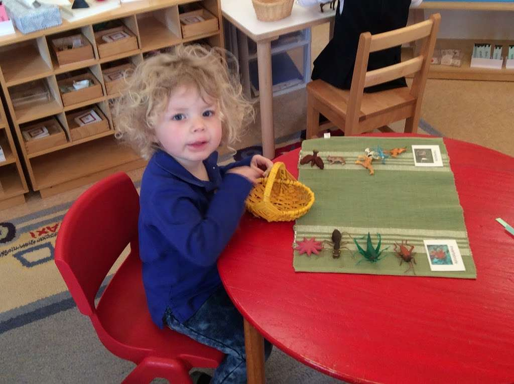 Village Montessori School - school  | Photo 2 of 10 | Address: 33874 Snickersville Turnpike, Bluemont, VA 20135, USA | Phone: (540) 454-7514
