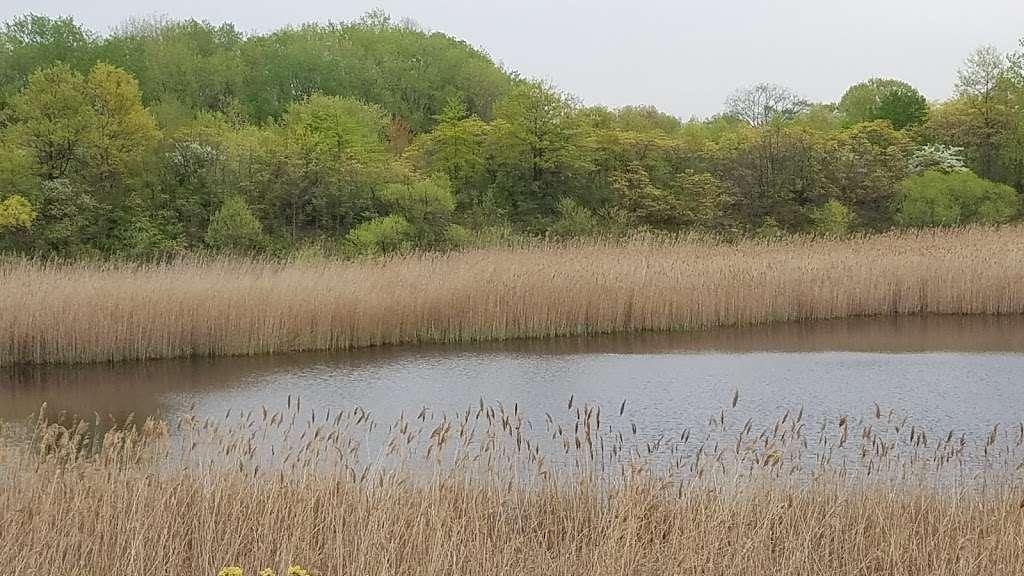 Ridgewood Reservoir - park    Photo 1 of 9   Address: Jackie Robinson Pkwy, Brooklyn, NY 11208, USA   Phone: (212) 639-9675