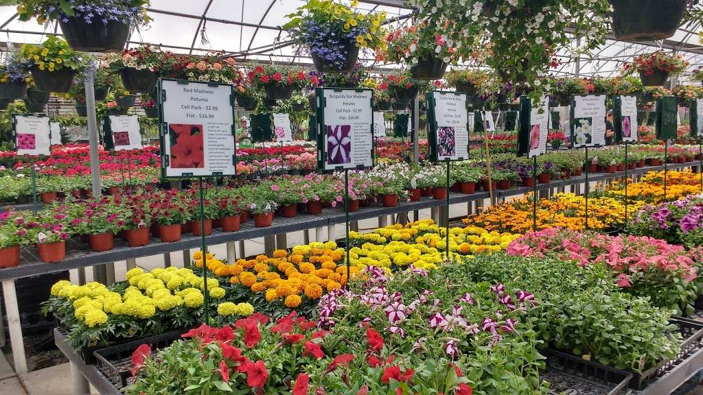 Webers Nursery & Garden Center - store  | Photo 5 of 9 | Address: 1912 Martinsburg Pike, Winchester, VA 22603, USA | Phone: (540) 722-9340