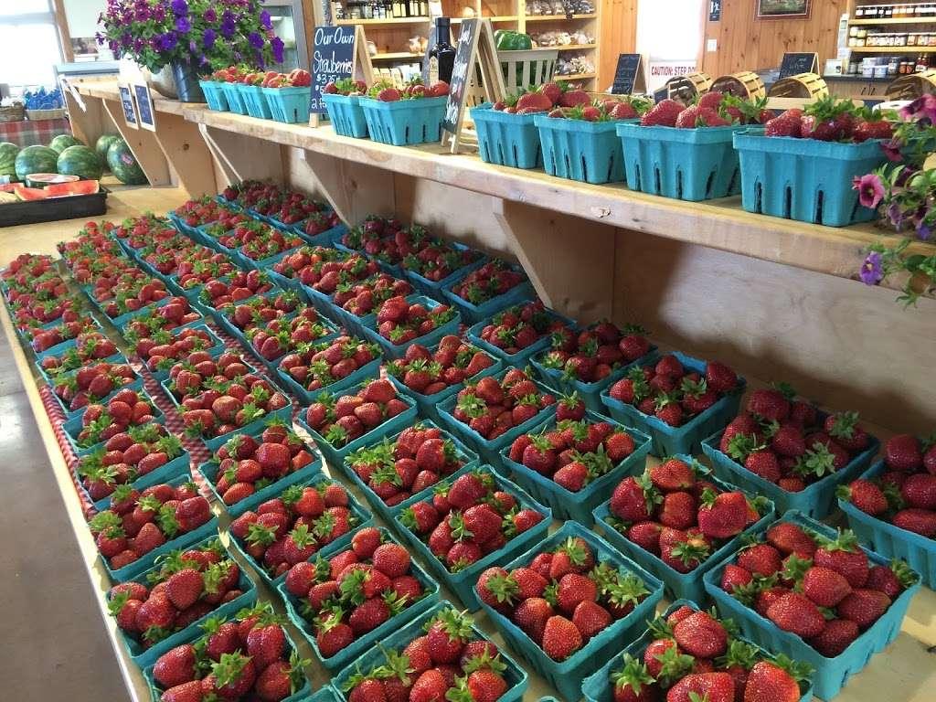 Harvest Lane Farm - bakery  | Photo 9 of 10 | Address: 851 E Oregon Rd, Lititz, PA 17543, USA | Phone: (717) 560-6219