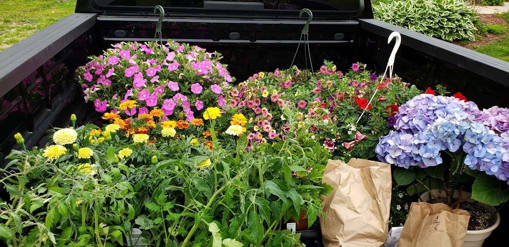 Hahns Greenhouse - store  | Photo 2 of 6 | Address: 2132 N Sage Rd, Walkerton, IN 46574, USA | Phone: (574) 586-3097