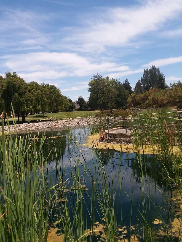 Lawler Falls Park - park    Photo 3 of 10   Address: 1401 Hammond Ln, Suisun City, CA 94585, USA