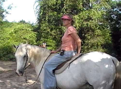 Becky Hellums Western Riding School - travel agency  | Photo 8 of 10 | Address: 2609 Holmes Rd, Richmond, TX 77469, USA | Phone: (281) 342-5355