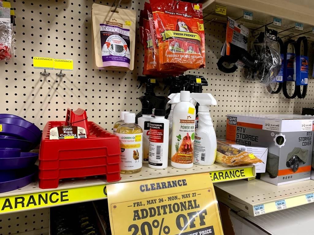Tractor Supply Co, 32 FM32, Cibolo, TX 32, USA