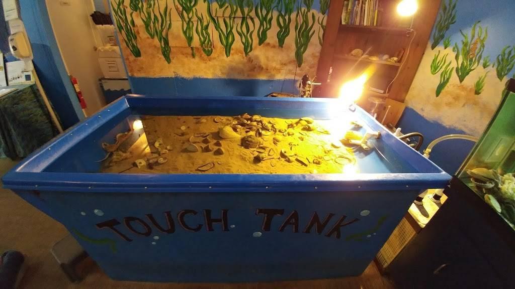 Glen Echo Park Aquarium - aquarium    Photo 9 of 9   Address: 7300 Macarthur Blvd, Glen Echo, MD 20812, USA   Phone: (301) 955-6256