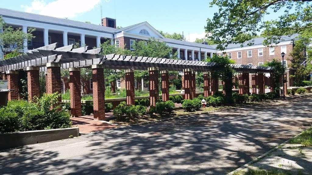 Hammock Grove - park    Photo 3 of 10   Address: Brooklyn, NY 11231, USA