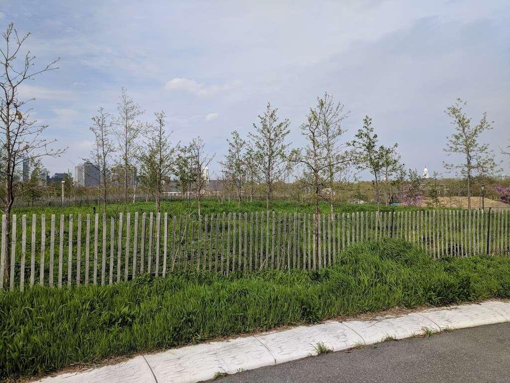The Oval - park  | Photo 2 of 10 | Address: New York, NY 10004, USA