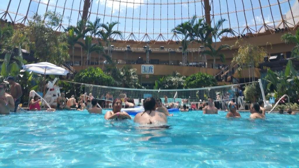 The Pool After Dark - night club  | Photo 4 of 10 | Address: 777 Harrahs Blvd, Atlantic City, NJ 08401, USA | Phone: (609) 441-5585