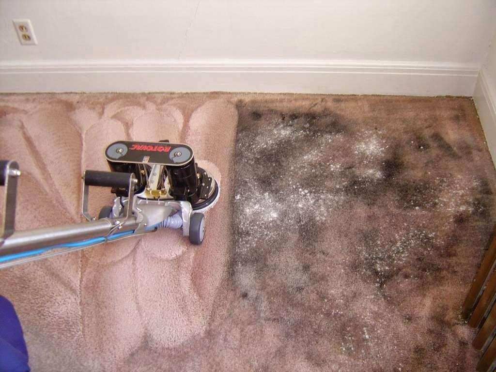 Preferred Carpet Cleaning - laundry  | Photo 3 of 4 | Address: 80-6 155th Ave, Howard Beach, NY 11414, USA | Phone: (718) 343-1424