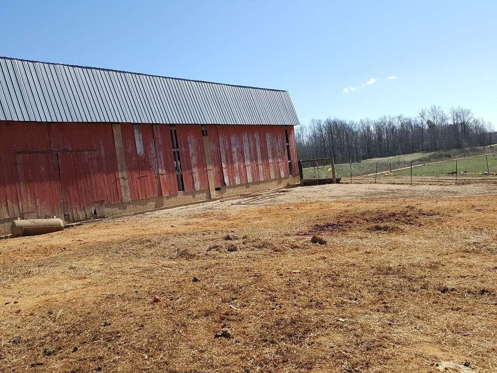 Amish meat John Wye - store  | Photo 6 of 10 | Address: 37404 Westham Ln, Mechanicsville, MD 20659, USA | Phone: (240) 707-1269