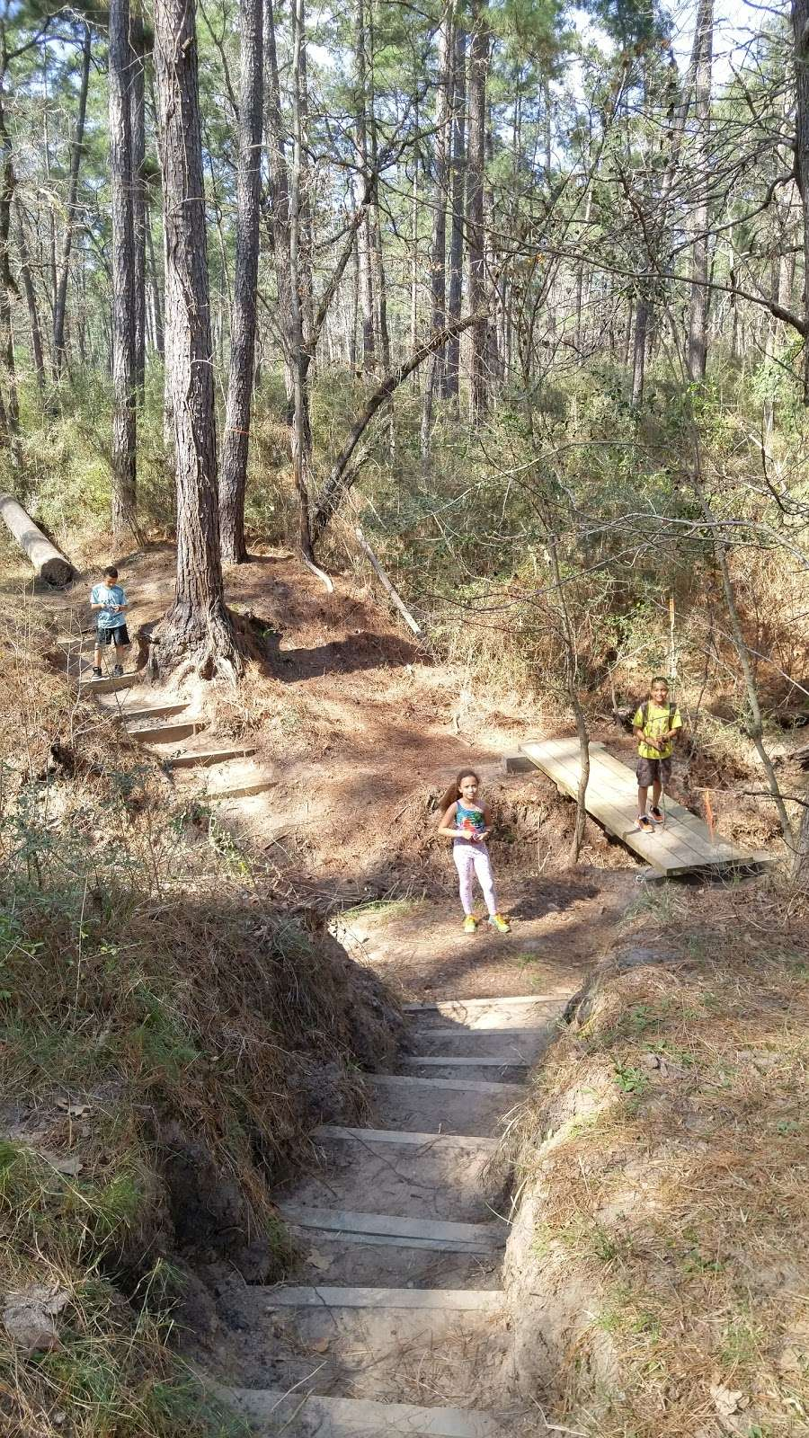 Lone Star Trailhead #4 - park  | Photo 6 of 9 | Address: FM 149, Montgomery, TX 77356, USA | Phone: (936) 344-6205