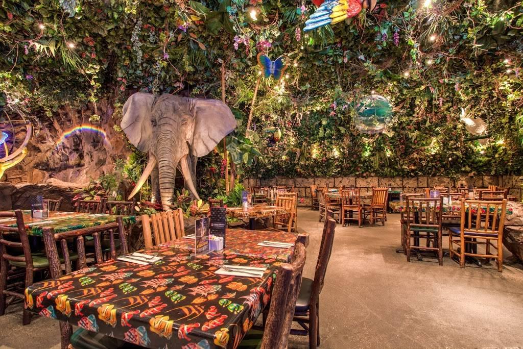 Rainforest Cafe - restaurant  | Photo 2 of 9 | Address: 1800 E Buena Vista Dr, Lake Buena Vista, FL 32830, USA | Phone: (407) 827-8500