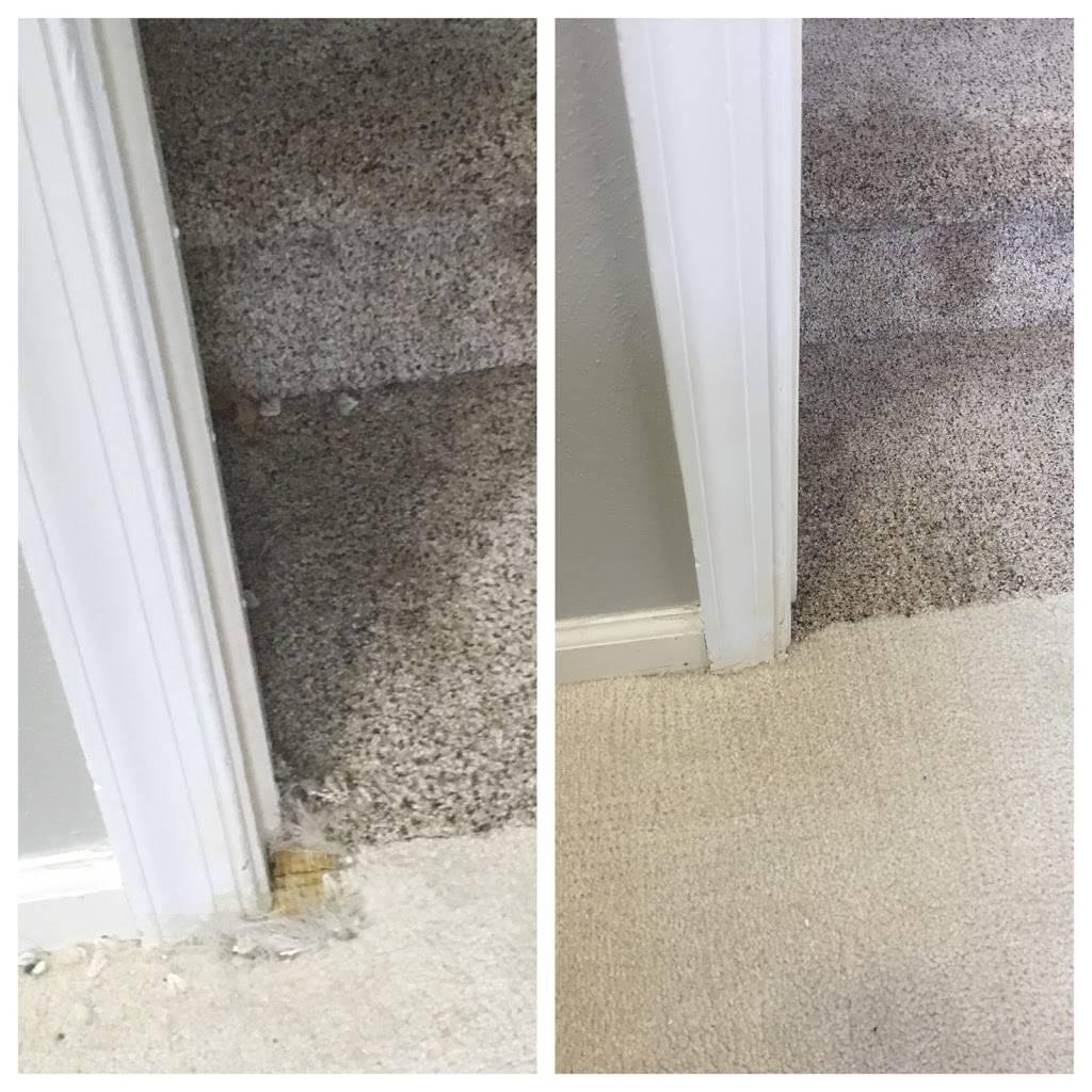 Tidewater Carpet Repair - laundry  | Photo 4 of 8 | Address: 5432 Ashby St, Norfolk, VA 23502, USA | Phone: (757) 648-0586