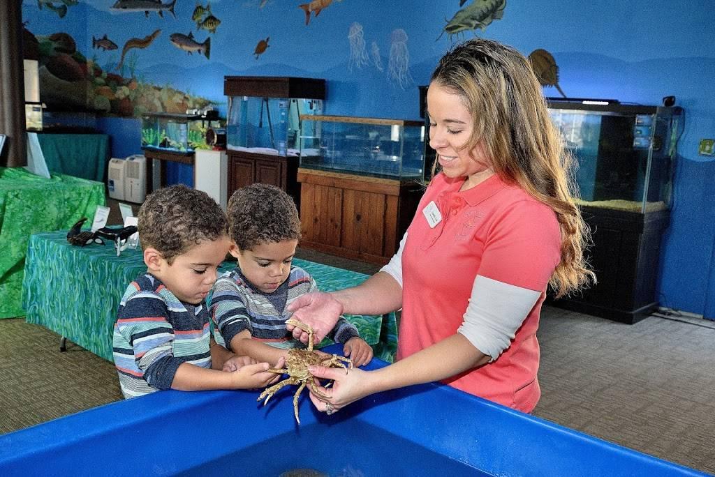 Glen Echo Park Aquarium - aquarium    Photo 1 of 9   Address: 7300 Macarthur Blvd, Glen Echo, MD 20812, USA   Phone: (301) 955-6256