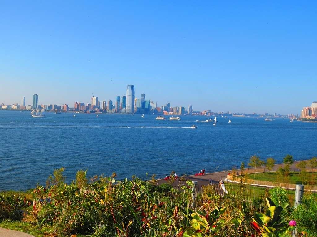 The Hills - park  | Photo 10 of 10 | Address: 870-898 Gresham Rd, New York, NY 10004, USA