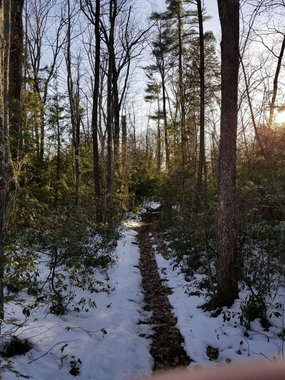 Cider Mill Pond Trailhead - park    Photo 8 of 10   Address: 03033, Brookline, NH 03033, USA