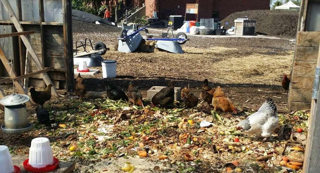 Governors Island Teaching Garden - park  | Photo 8 of 10 | Address: 778 Enright Rd, New York, NY 10004, USA | Phone: (212) 788-7900