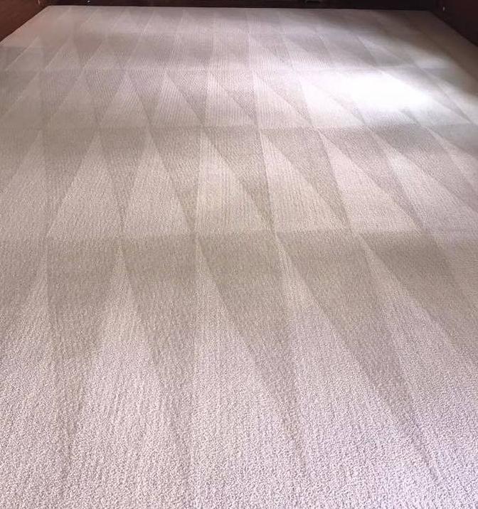 Mar Vista Carpet & Upholstery Cleaning - laundry  | Photo 2 of 2 | Address: 11412 Venice Blvd, Los Angeles, CA 90066, USA | Phone: (424) 228-8266