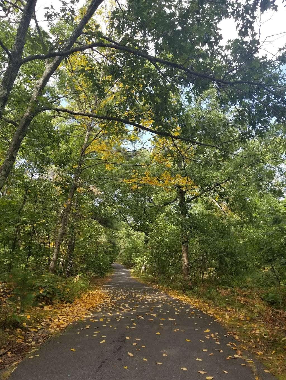 Turtle Pond - park  | Photo 6 of 10 | Address: Turtle Pond, Boston, MA 02132, USA