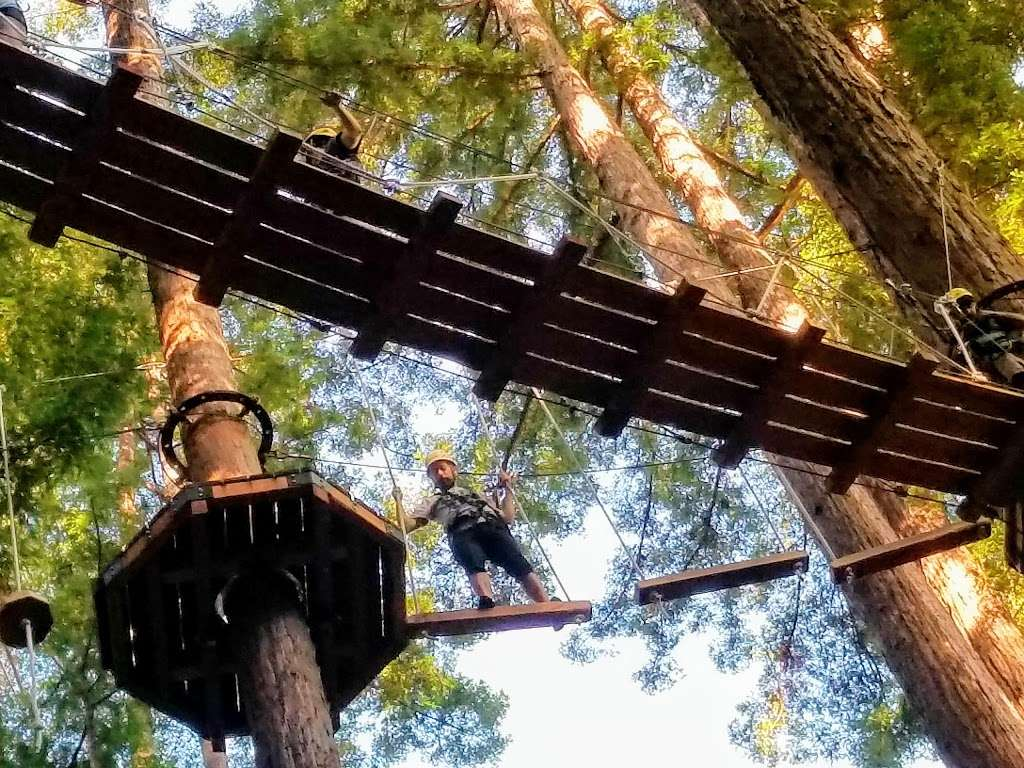 Redwood Canopy Tour - travel agency  | Photo 5 of 10 | Address: 17 Conference Dr, Felton, CA 95014, USA | Phone: (831) 430-4357