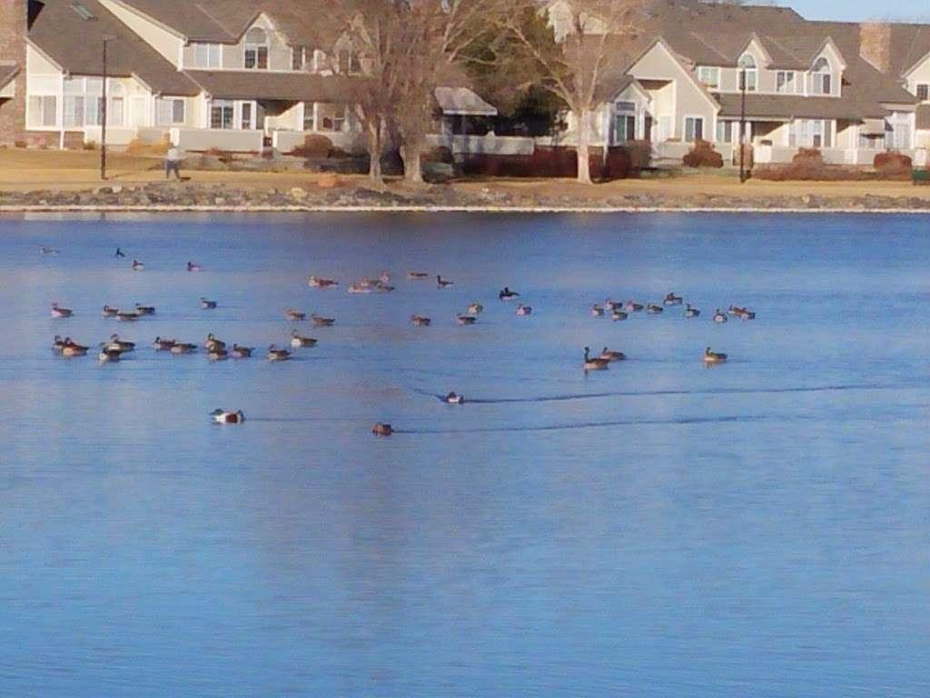Hunters Glen Lake Park - park    Photo 8 of 10   Address: Thornton, CO 80241, USA   Phone: (303) 255-7830