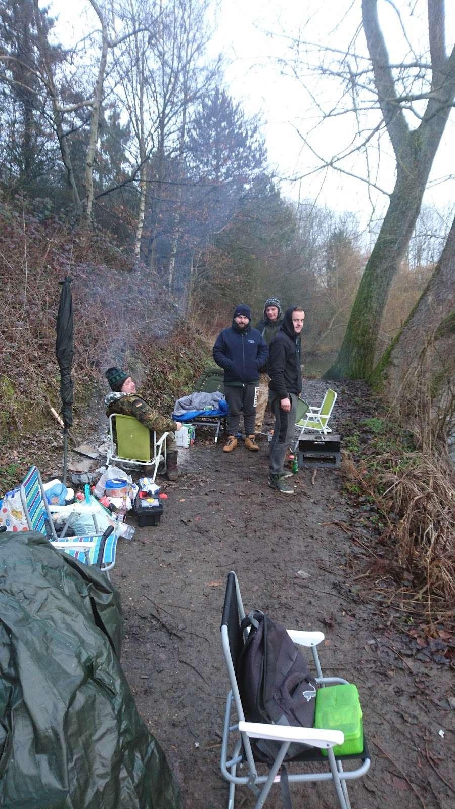 Holwell Hyde - park  | Photo 8 of 10 | Address: Welwyn Garden City AL7 4AA, UK