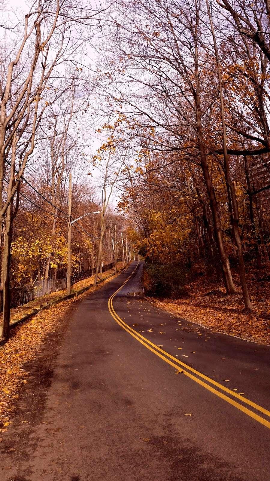 Raoul Wallenberg Forest - park  | Photo 1 of 6 | Address: Douglas Ave, Bronx, NY 10463, USA | Phone: (212) 639-9675