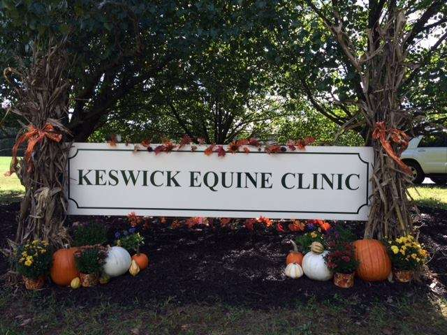 Keswick Equine Clinic - veterinary care  | Photo 1 of 6 | Address: 201 Taylor Ave, Gordonsville, VA 22942, USA | Phone: (540) 832-3030
