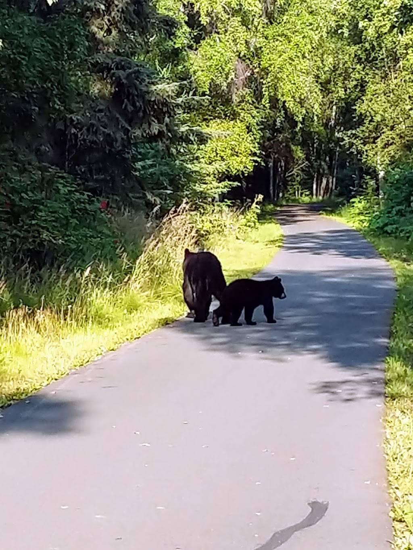 Point Woronzof Park - park  | Photo 10 of 10 | Address: 7251 Point Woronzof Drive, Anchorage, AK 99517, USA | Phone: (907) 343-7529