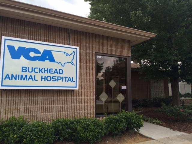 VCA Buckhead Animal Hospital - veterinary care  | Photo 1 of 9 | Address: 1911 Piedmont Cir NE, Atlanta, GA 30324, USA | Phone: (404) 873-3771