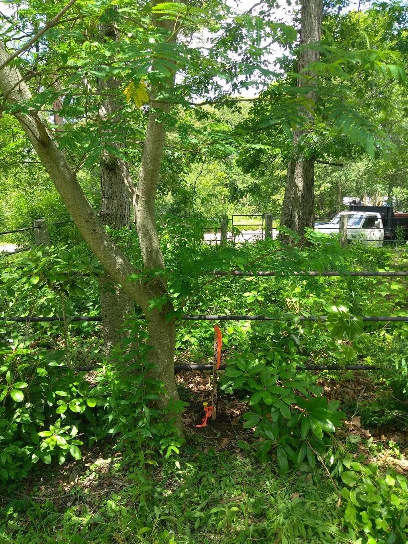 Wood Lake Park - park  | Photo 7 of 10 | Address: 103 Reservoir Ave, Johnston, RI 02919, USA