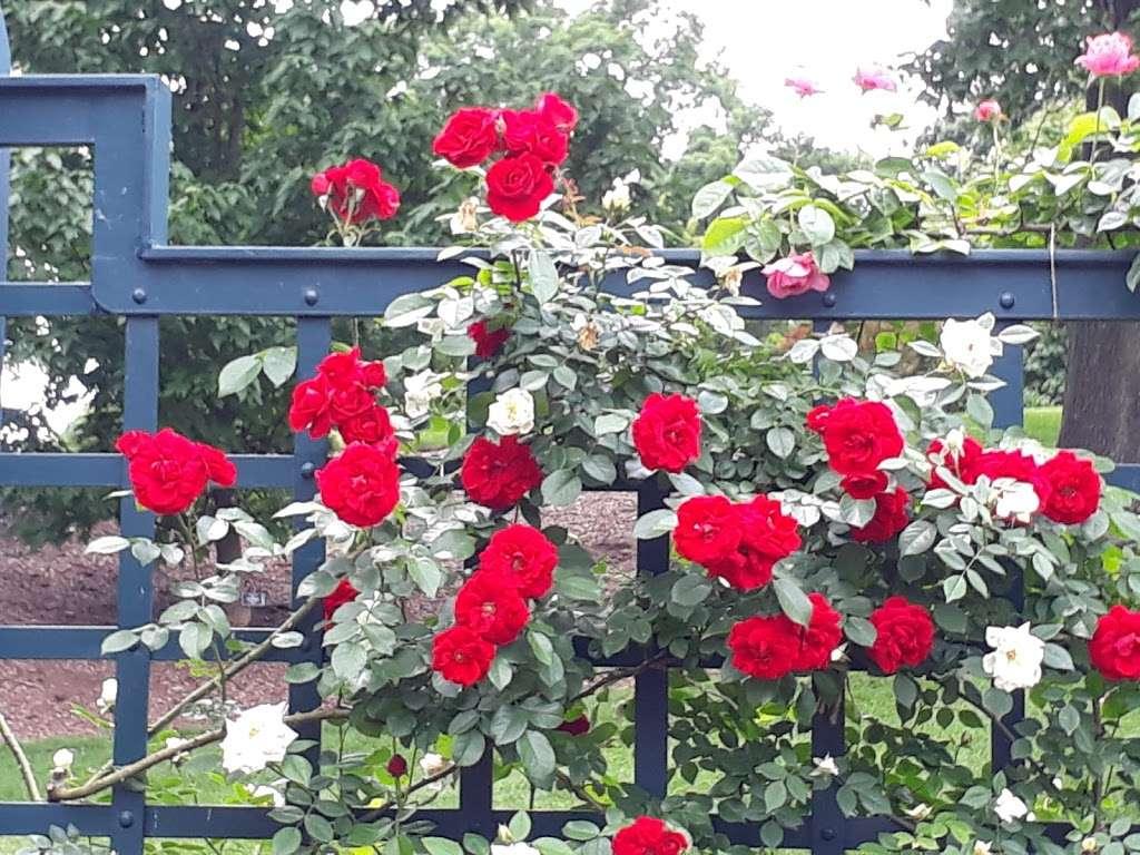 Rockefeller Rose Garden - park  | Photo 10 of 10 | Address: Bronx River Pkwy, Bronx, NY 10467, USA | Phone: (718) 817-8700