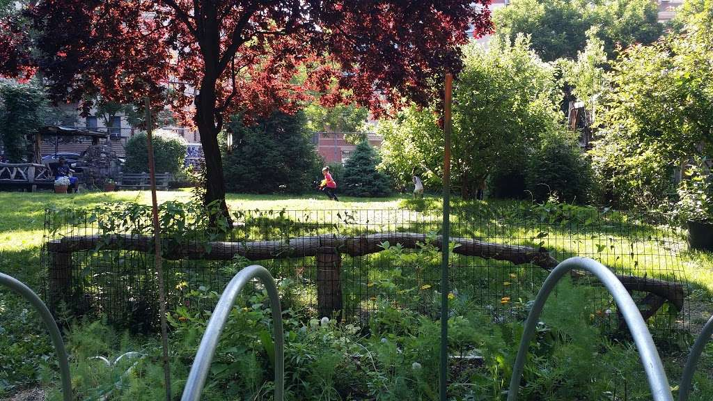 Archangel Botanica - store  | Photo 3 of 10 | Address: 295 E 170th St, Bronx, NY 10456, USA | Phone: (718) 588-5869
