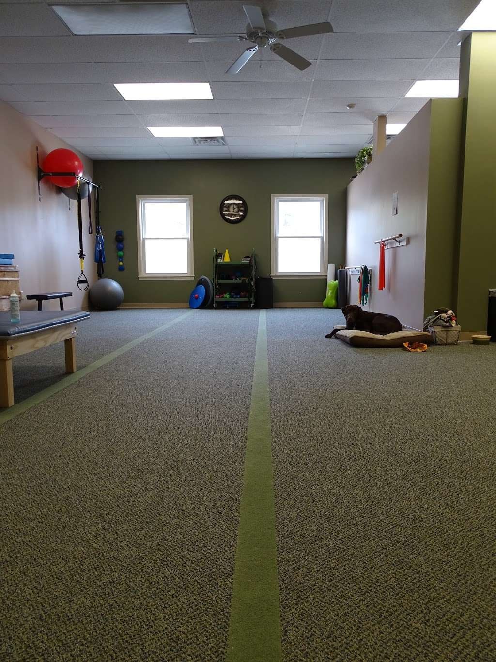 Apex Physical Therapy & Fitness - doctor  | Photo 6 of 6 | Address: 199 NH-101 #5b, Amherst, NH 03031, USA | Phone: (603) 249-3337